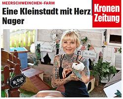 kronenzeitung.jpg