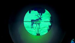 Alaska Game Deer