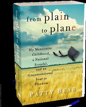 FPTP 3D paperback final.png