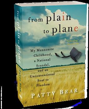 FPTP 3D paperback7.png