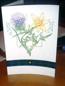 Thistle and Daffodil Invites