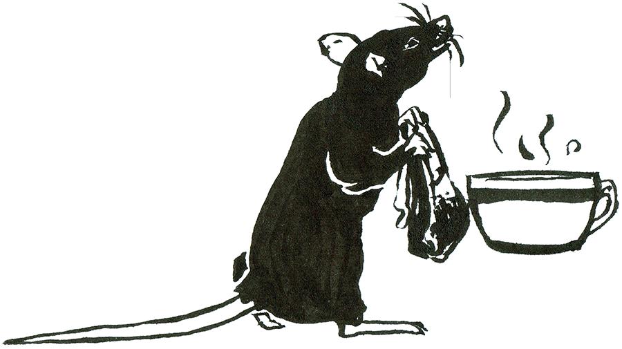 Rat Day 11