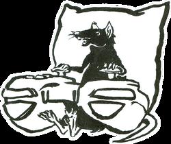 Rat Day 14