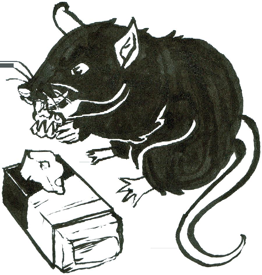 Rat Day 2