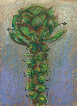 07 BrusselSprouts