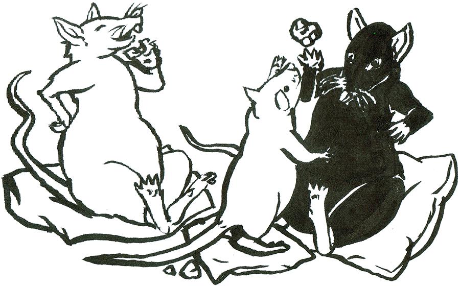 Rat Day 22