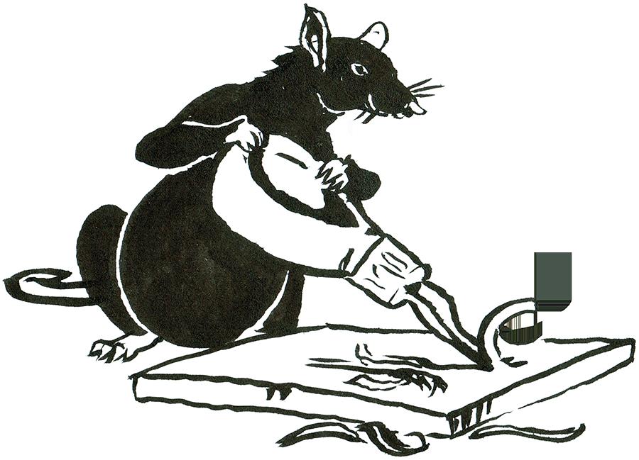 Rat Day 16