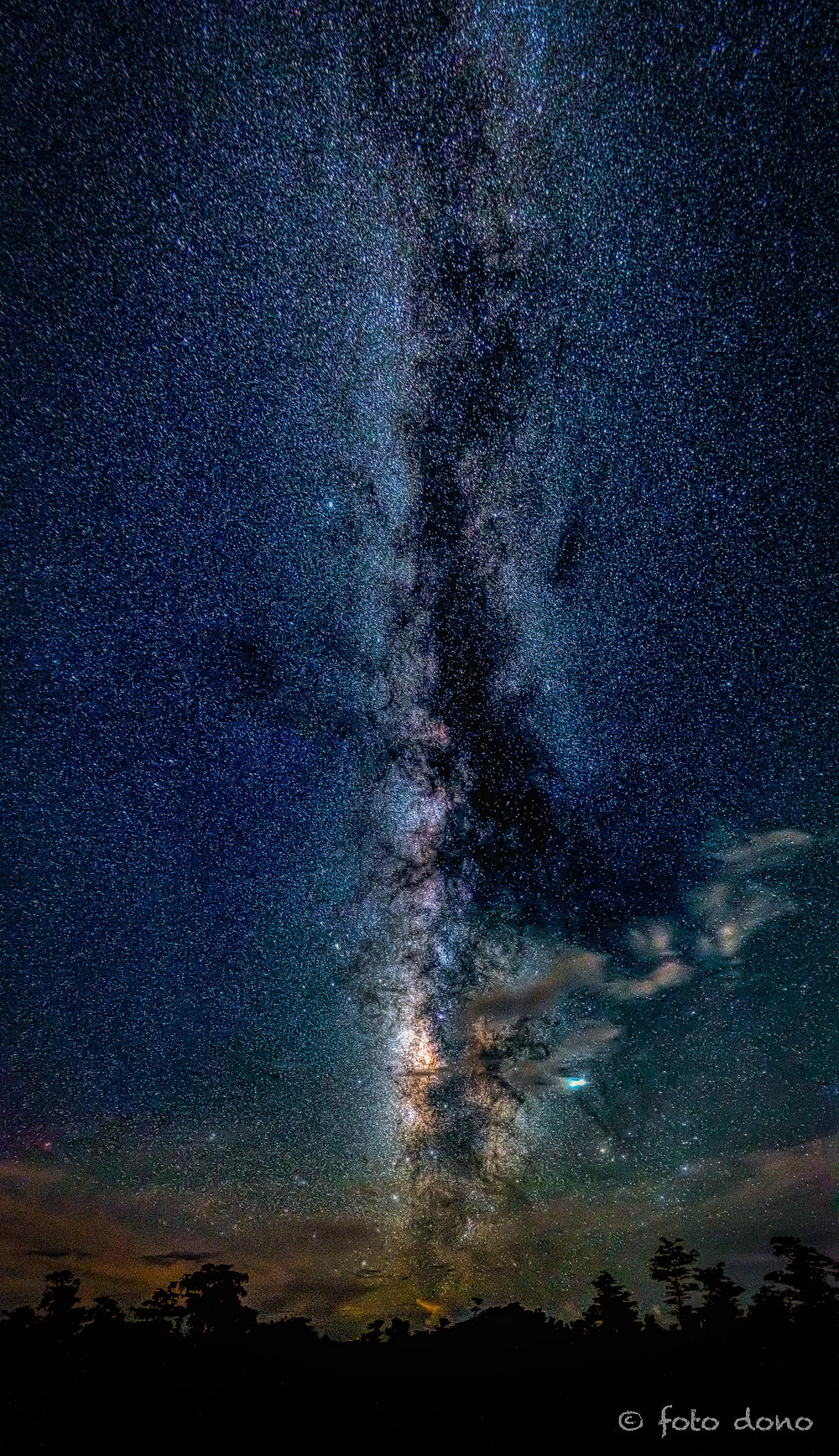 The Milky Way in the Big Cypress Swamp