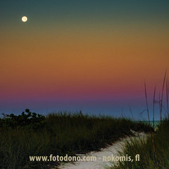 Moon Setting in the Blue Hour before the Sun Rises