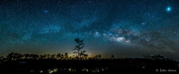 Across the Everglades