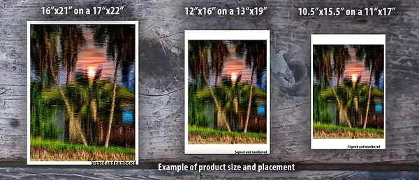 Reflection Sun Example copy.jpg