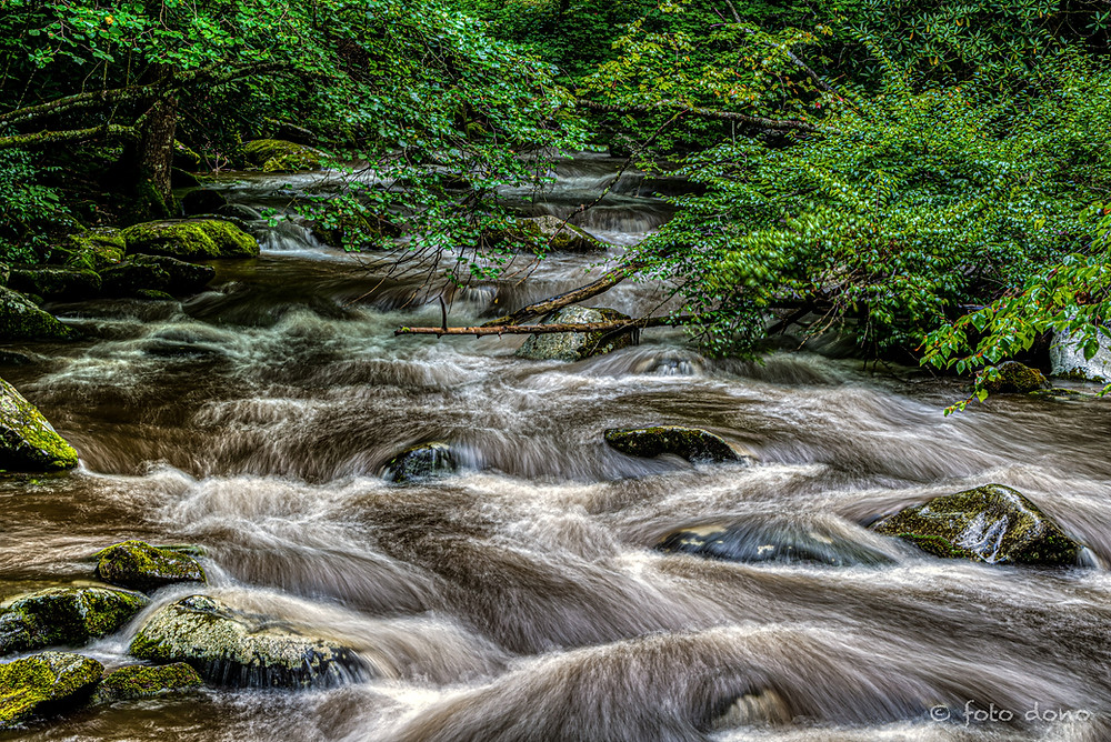 Using motion blur in the camera to create a streaming effect on the water.