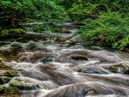 Smoky Mountain Streams