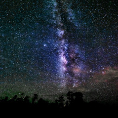 The Galactic Core over the Everglades