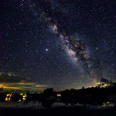 The Milky way over Fakahatchee