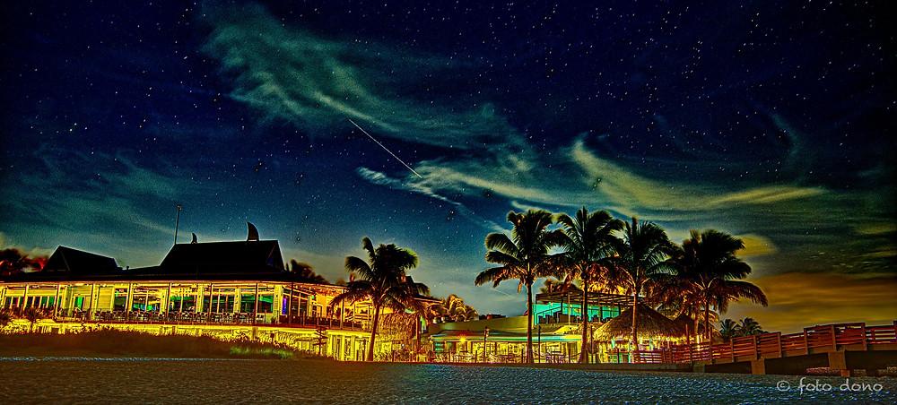 Sharky's Restaurant - Night Photo - Venice, FL