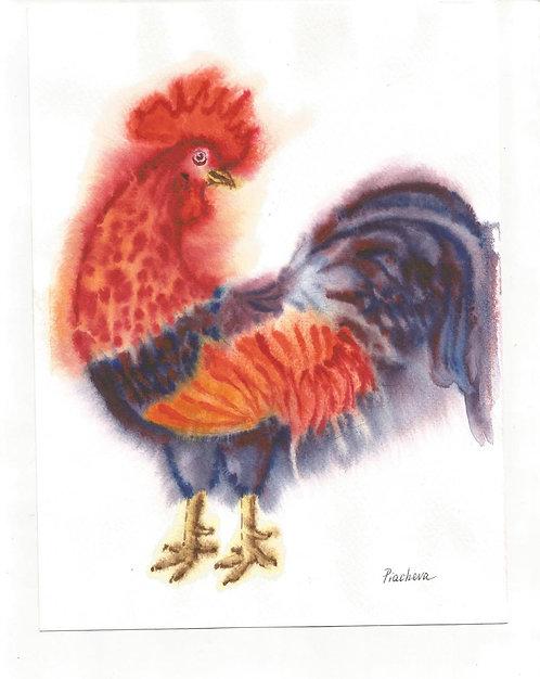 Петух с красными перьями