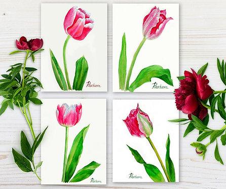 Розовые тюльпаны с изогнутыми лепестками