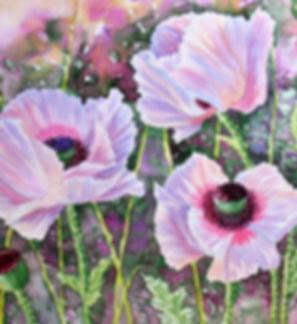 Pink Poppies .jpg