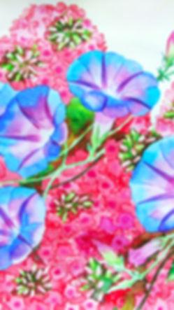 Bindweed in  the garden_1.jpg
