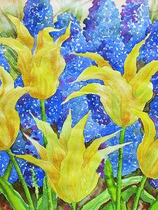 Yellow tulips. flower, leaf, botanical,blossom, plant, floral,