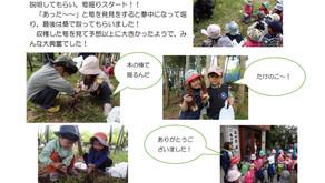 たけのこほり(2019年4月17日)