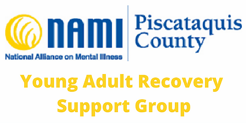 Young Adult Recovery Support Group