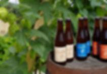 bieres-6124b985.jpeg