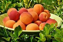 abricots-du-Roussillon.jpg