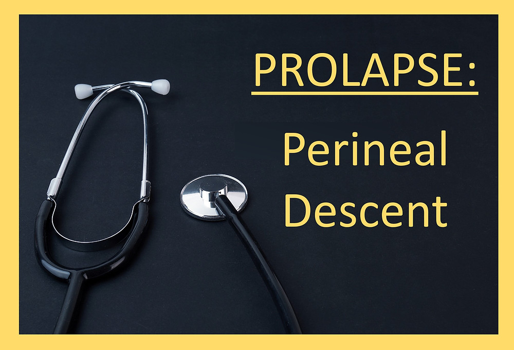 image with text that reads prolapse perineal descent