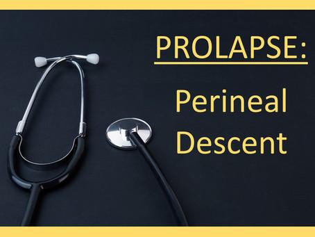 Pelvic Prolapse - Perineal Descent