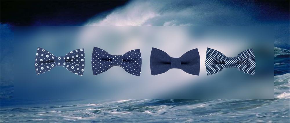noeud papillon bleu marine