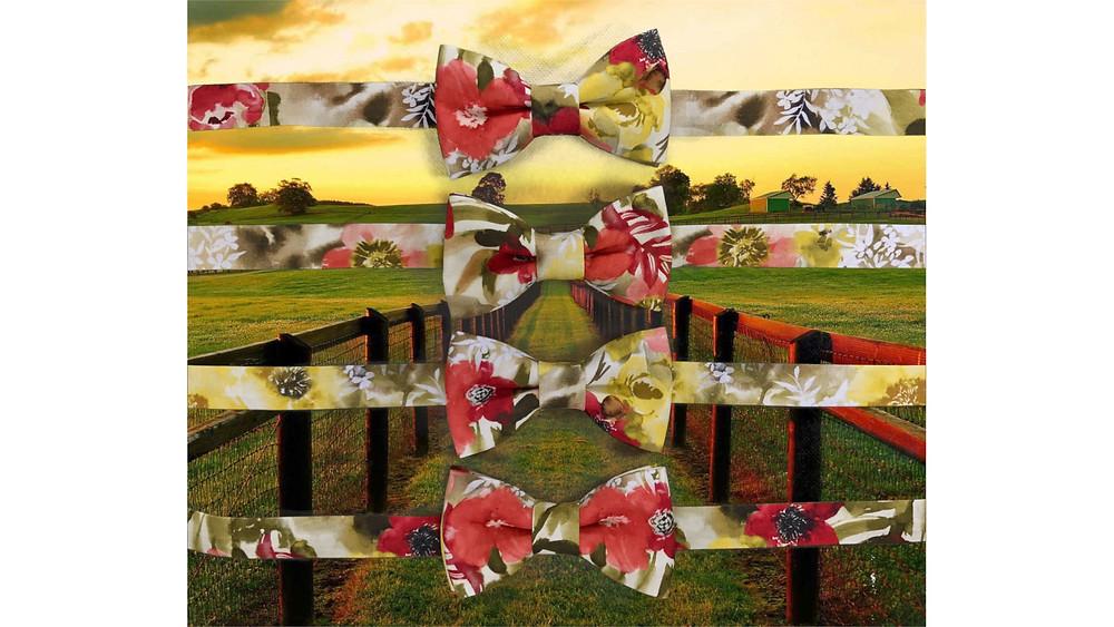 noeuds papillon aux couleurs d'automne