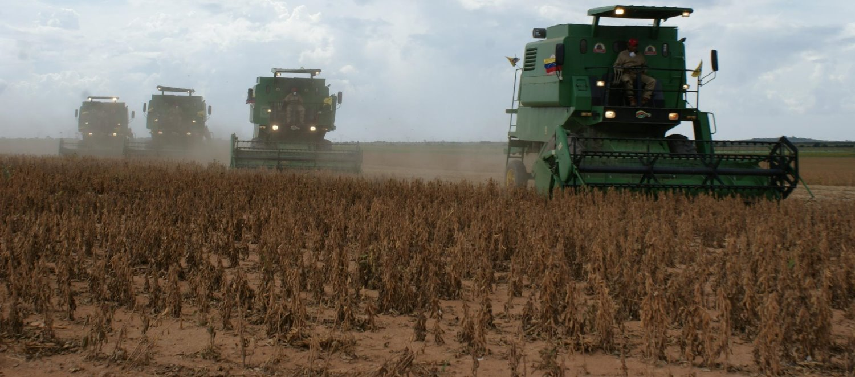 harvest-519209