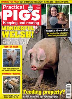Practical Pigs