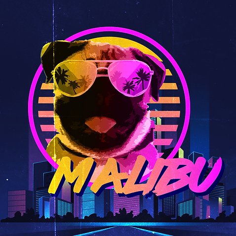 Malibu pog front.png