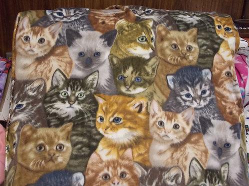 Kittens Fleece