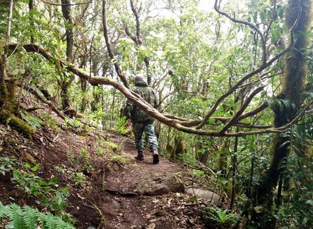 Disfruta de la naturaleza con una ruta única