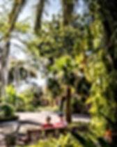jardin-botanico-puerto-cruz.jpg
