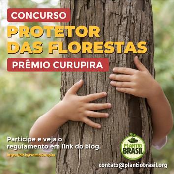 Concurso Protetor das Florestas