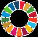 n2_objetivos_globais_edited.png
