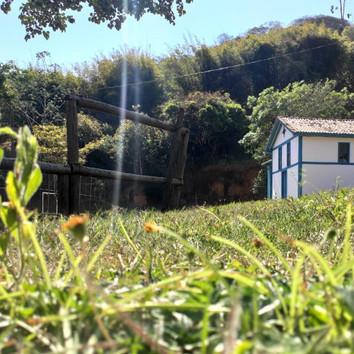 Instituto Interagir divulga os vencedores de concurso fotográfico
