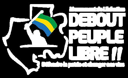 logo PNG drapeu en couleur.png