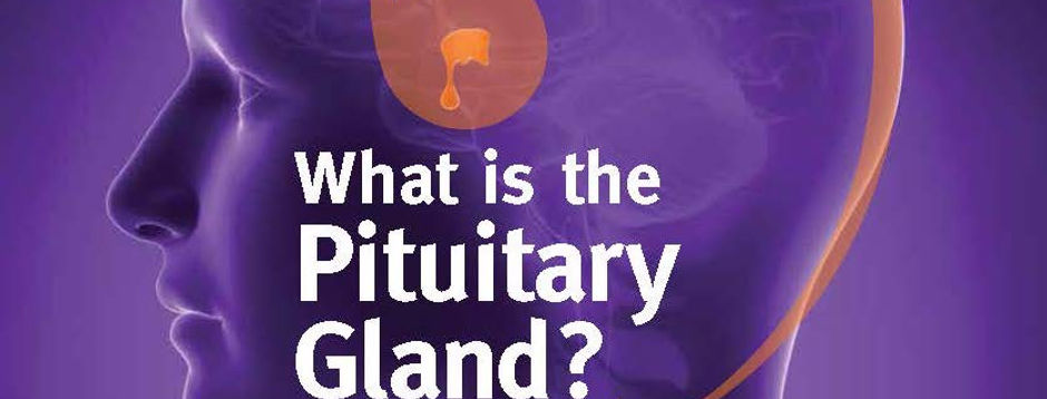 What-is-pit-gland-poster.jpg