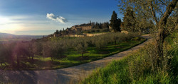 Vista Castellina