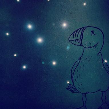 Puffin Nachtlicht