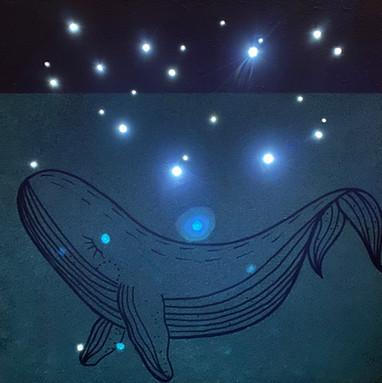 Blauwal Nachtlich