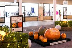 でかかぼちゃハロウィンアート展