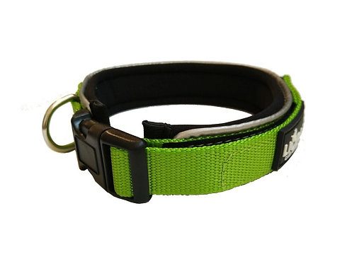 Lime Padded  Collar - Medium