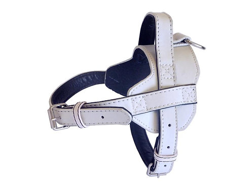Fusion White Harness - Small